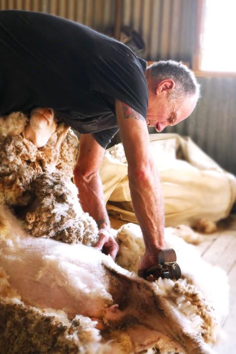 Blade Shearing